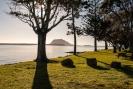 Fergusson Park Tauranga