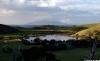 Tauwharanui view