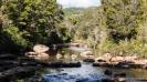 Charming Creek