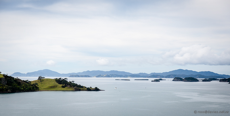 View from Akeake/Tareha Point lookout