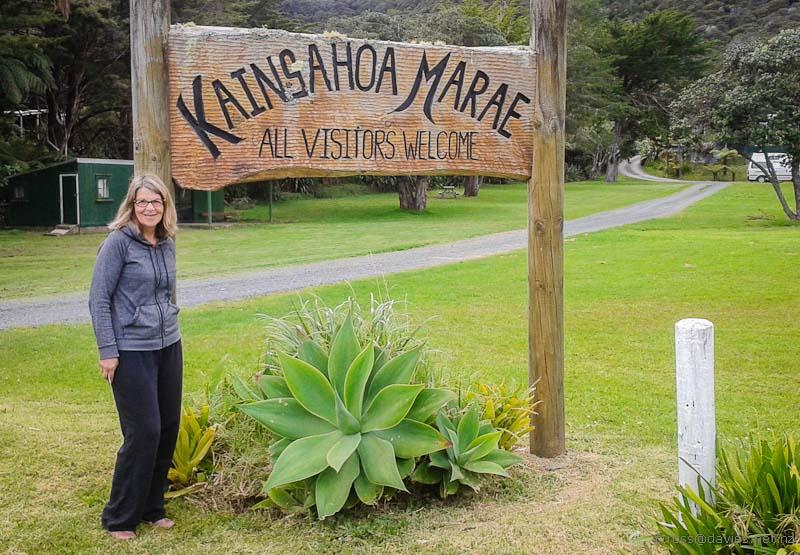 Kaingahoa Marae camping area