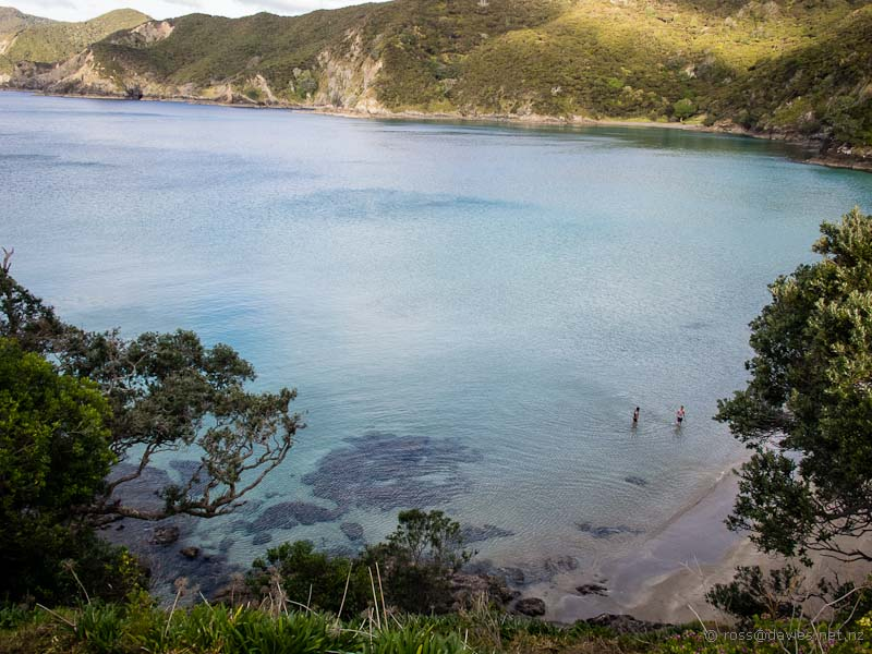 Oke Bay at Rawhiti