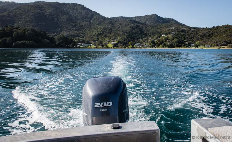 Leaving Kaingahoa Bay Rawhiti on the water taxi