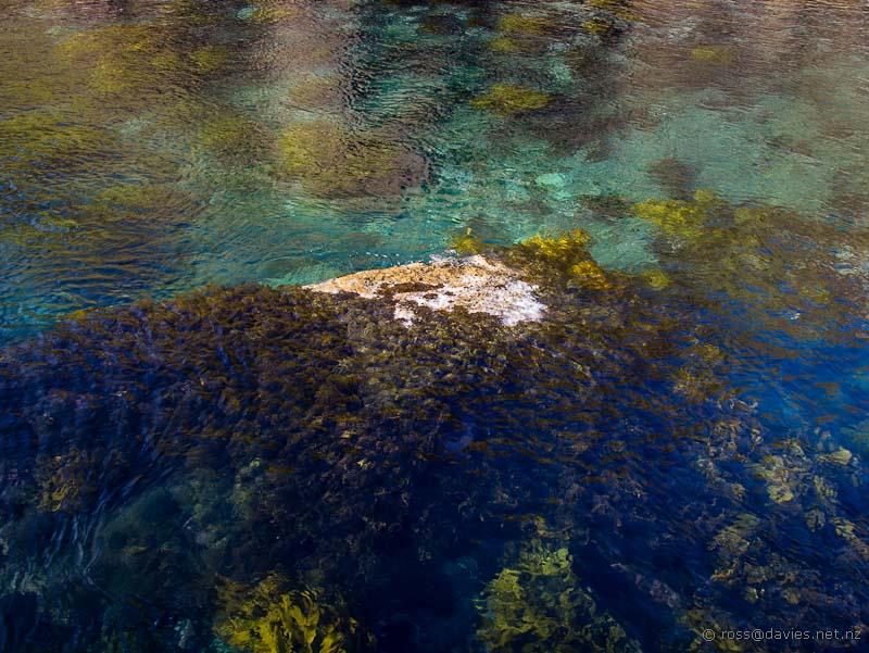 The sea below Cape Brett Hut