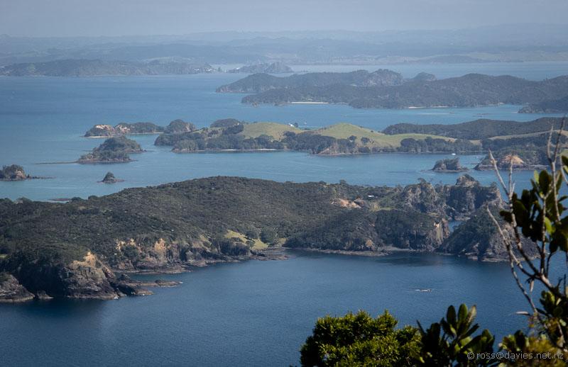 Bay of Islands from Cape Brett track