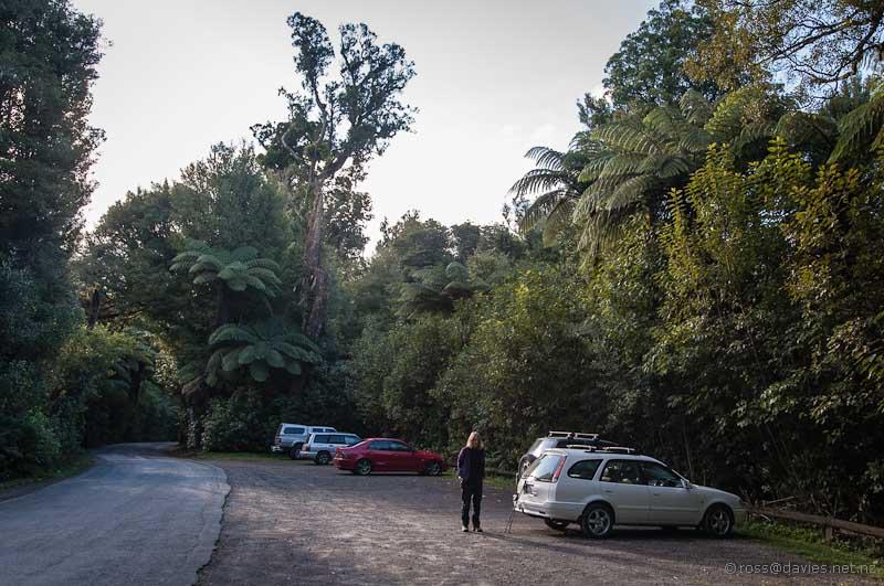 Carpark Otanewaiuku Forest