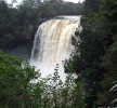 Waitangi River Falls