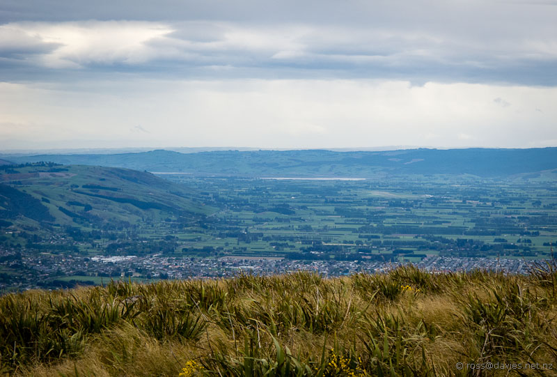 View south from Flagstaff down the Taieri Plains