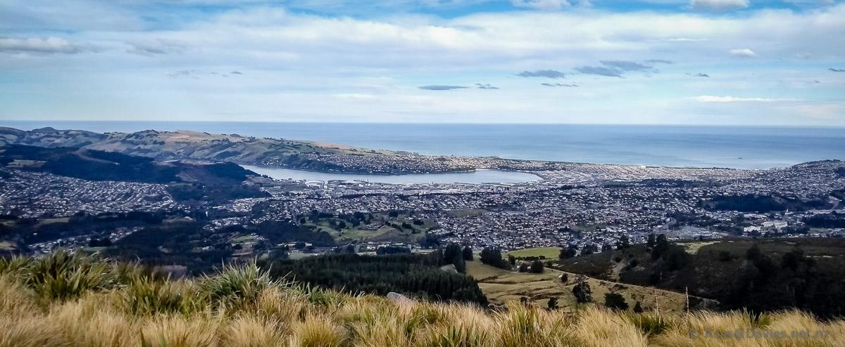Dunedin from the summit of Flagstaff.