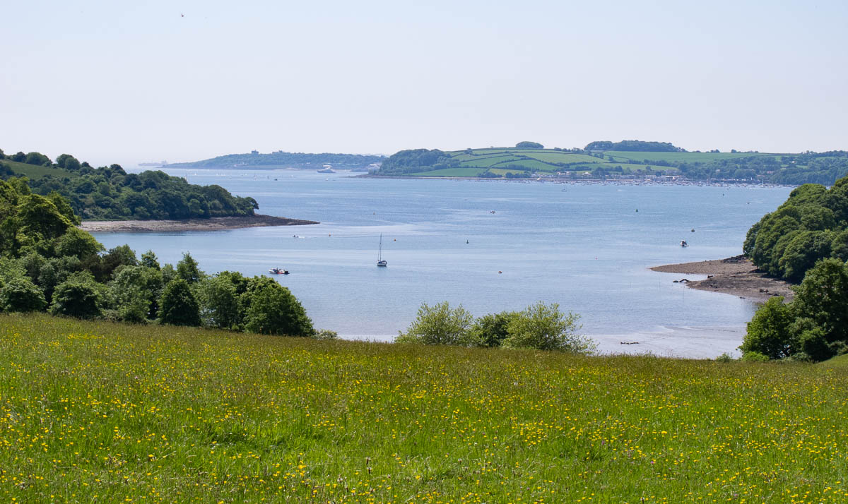Fel Estuary from Trelissick House