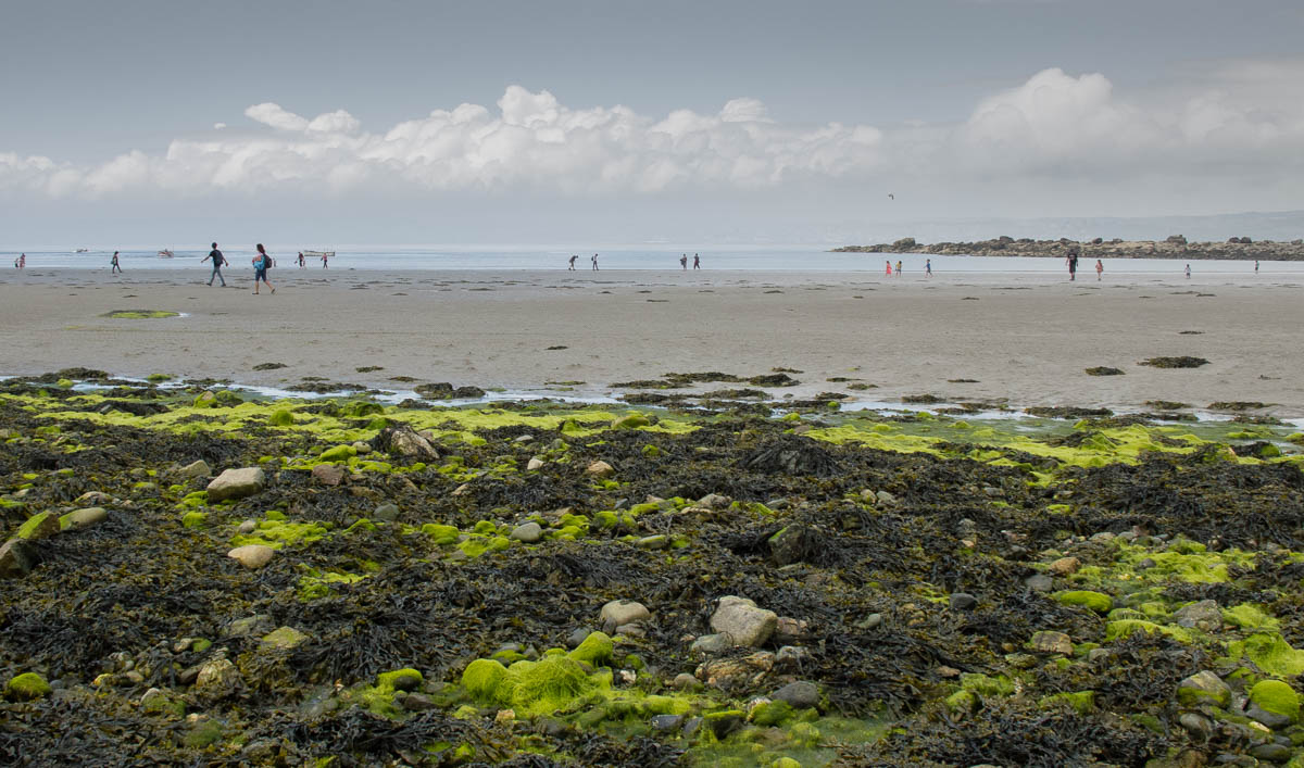 Sandflats west from St Michael's Mount causeway