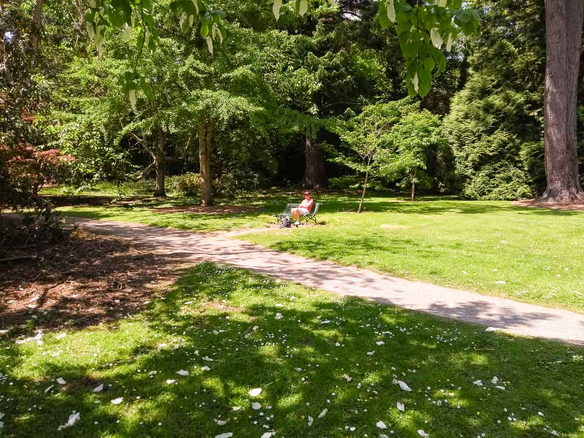Picnic lunch in Trelissick Gardens