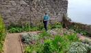 Castle gardens at St Michael's Mount