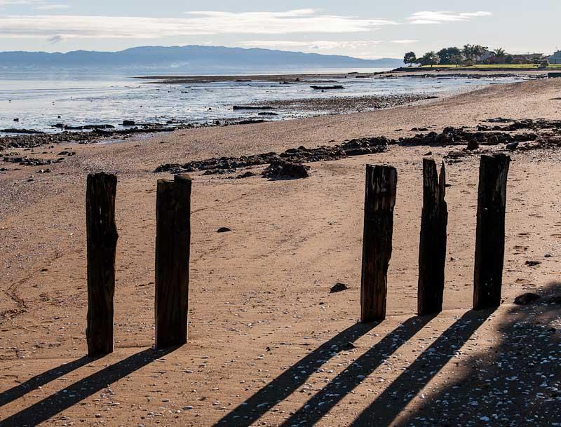 Firth of Thames coastline at Tararu