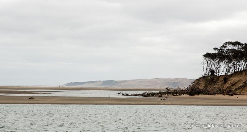 Waionui Inlet South Head Kaipara Harbour