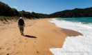 Totaranui Beach