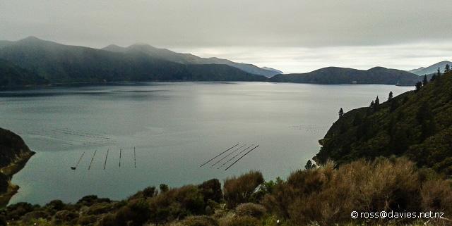 Beatrix Bay Marlborough Sounds