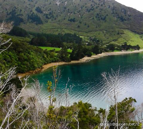 Waimaru Bay Marlborough Sounds