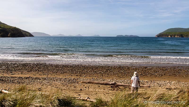 Titirangi Bay Marlborough Sounds