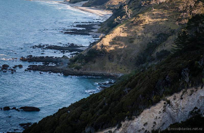 Coastline below the Mangawhai Cliff Top Walkway