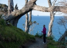 North on the Mangawhai Cliff Top Walkway