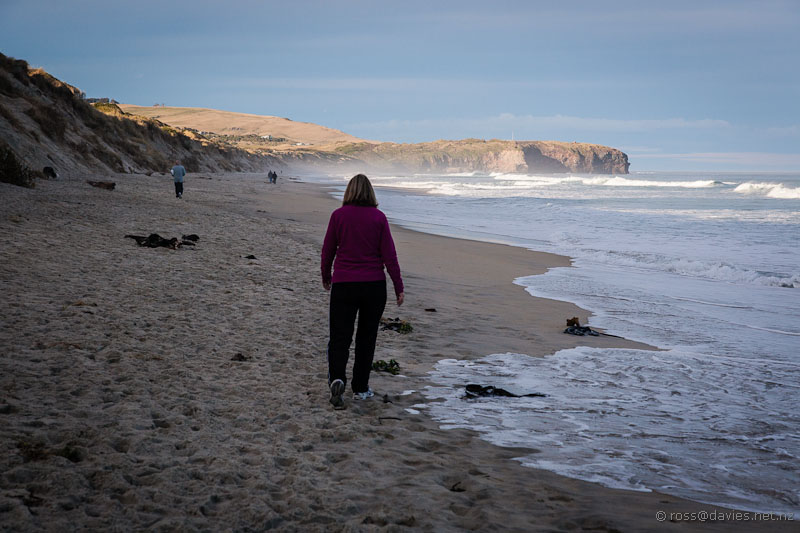 St Kilda beach Dunedin