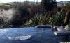 Waikete Hot Pools Wyn