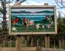 Highfield Garden Reserve Snells Beach