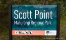 Scott Point Mahurangi Regional Park Auckland