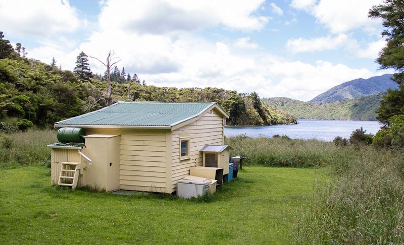 Little Deep Bay Hut Archer Track