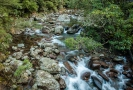 Bowyers Stream Mt Somers