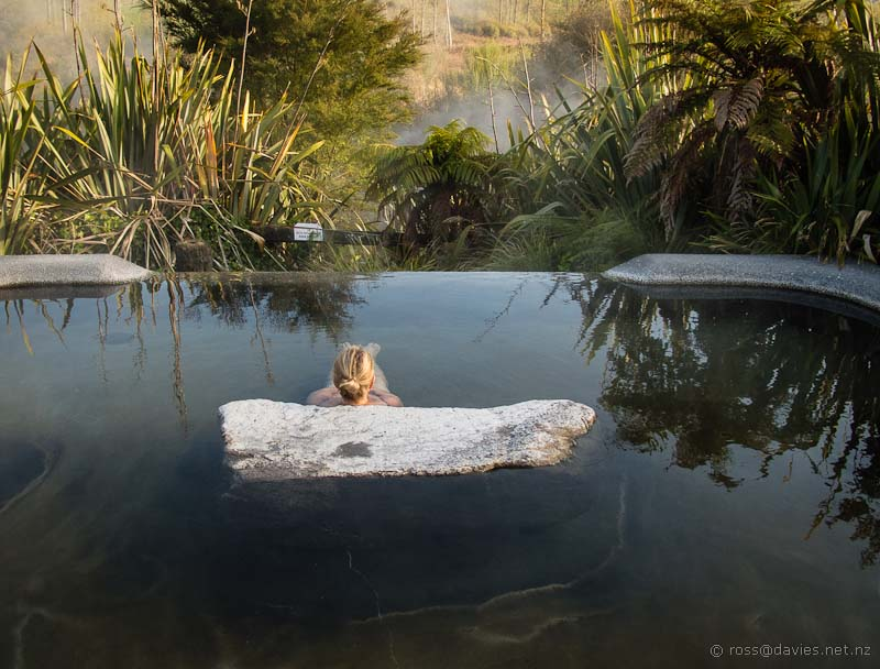 Early morning dip at Waikite hot pools