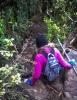 Scrambling down the Mt Te Aroha track