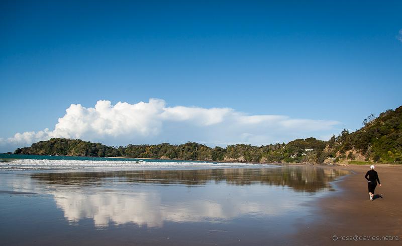 Woolleys Bay Tutukaka Coast