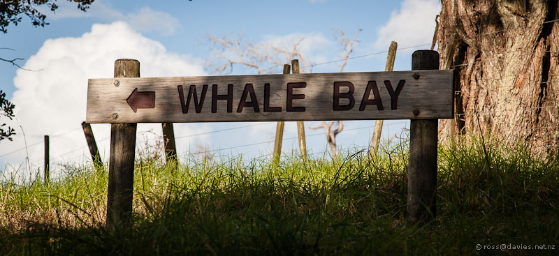 The way to Whale Bay