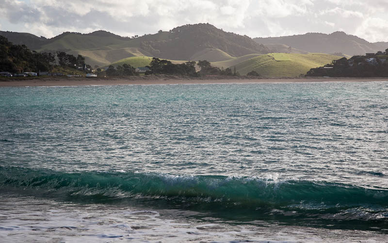 Woolleys Bay from Whale Bay