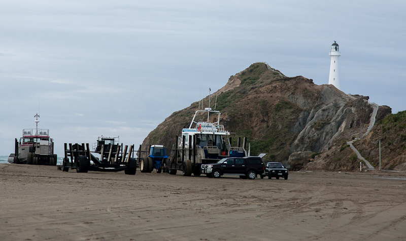 Castlepoint Fishing Boats