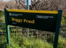 Boggy Pond sign