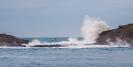 High Seas at Castlepoint Reef/Ridge