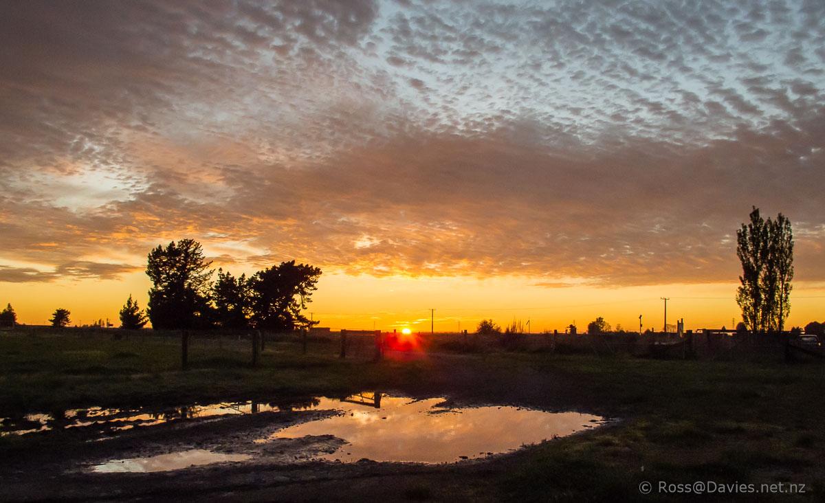 Sunrise at Ealing