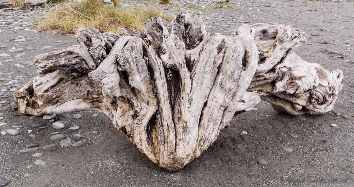 Driftwood on Okarito Beach