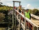 The Bridge of No Return