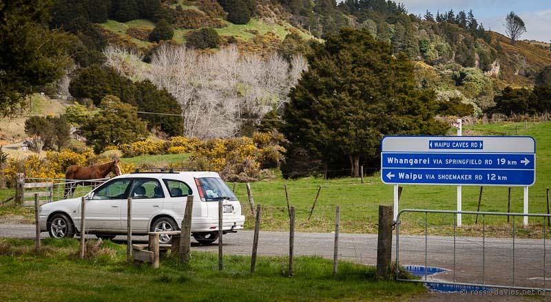 Waipu Caves road sign
