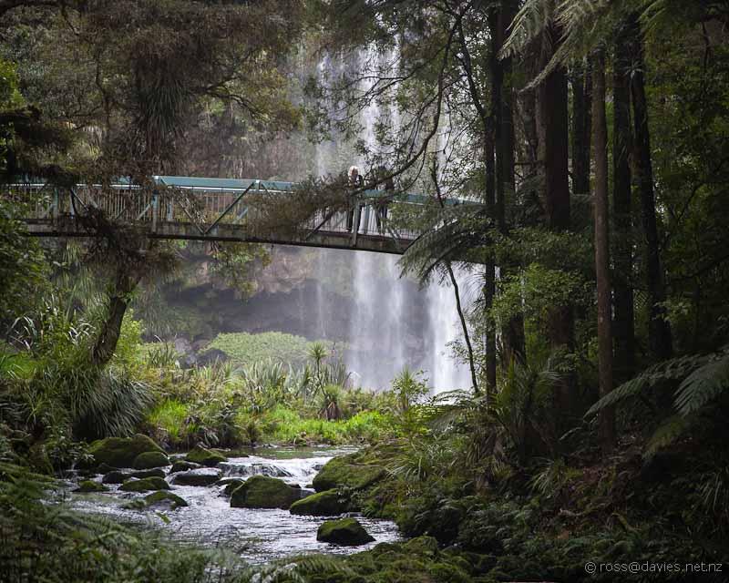 Hatea River and the Whangarei Falls