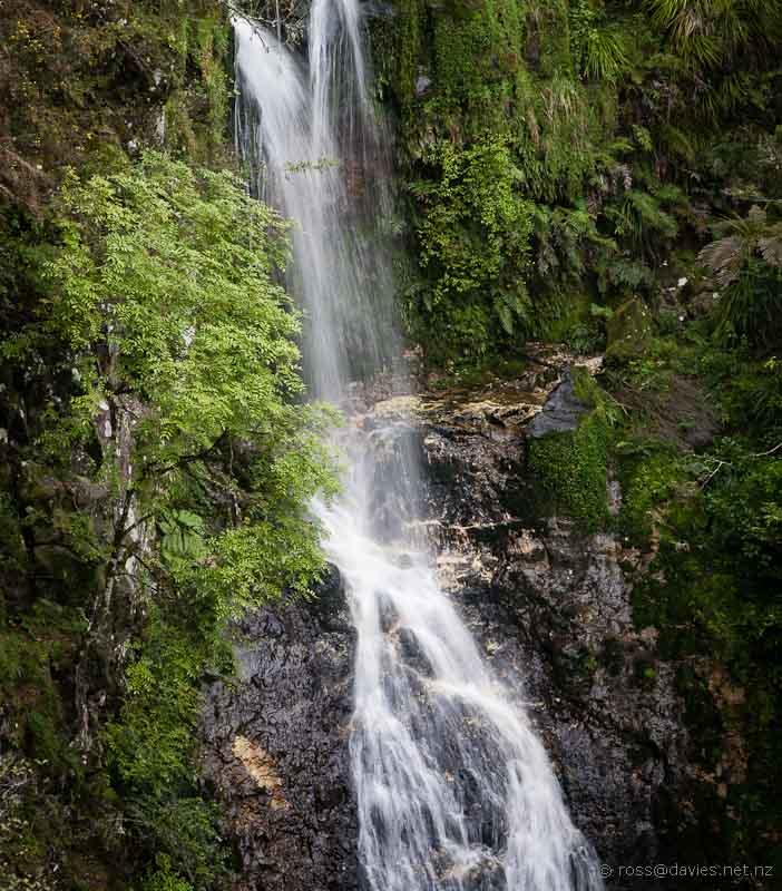Paranui Falls in A H Reed Memorial Park Whangarei