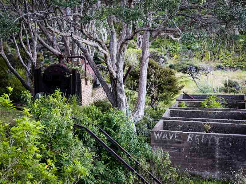 Remains of Whangamumu Harbour whaling station