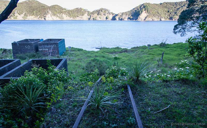Remains of the Whangamumu Harbour whaling station
