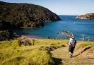 Descent to Whangamumu Harbour