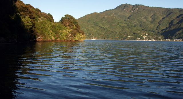 Aussie Bay looking to Anakiwa