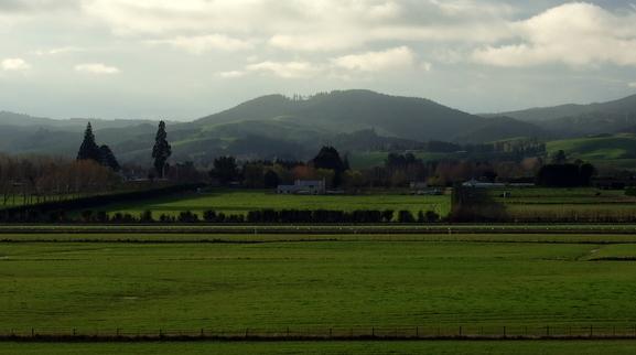 Taieri Plains from Wingatui